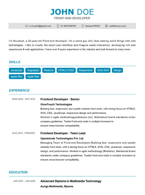 25 Professional Resume Templates Free Download